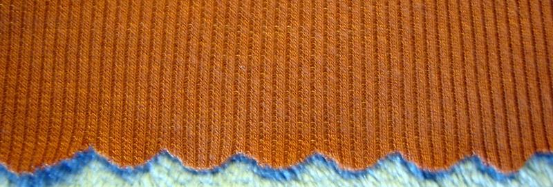 Close Up of Scallop Hem