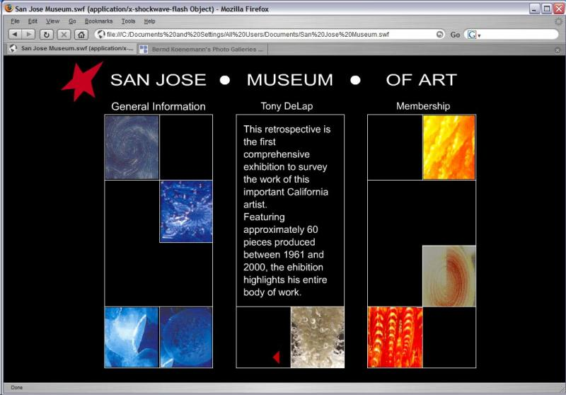 Art Museum Site Design