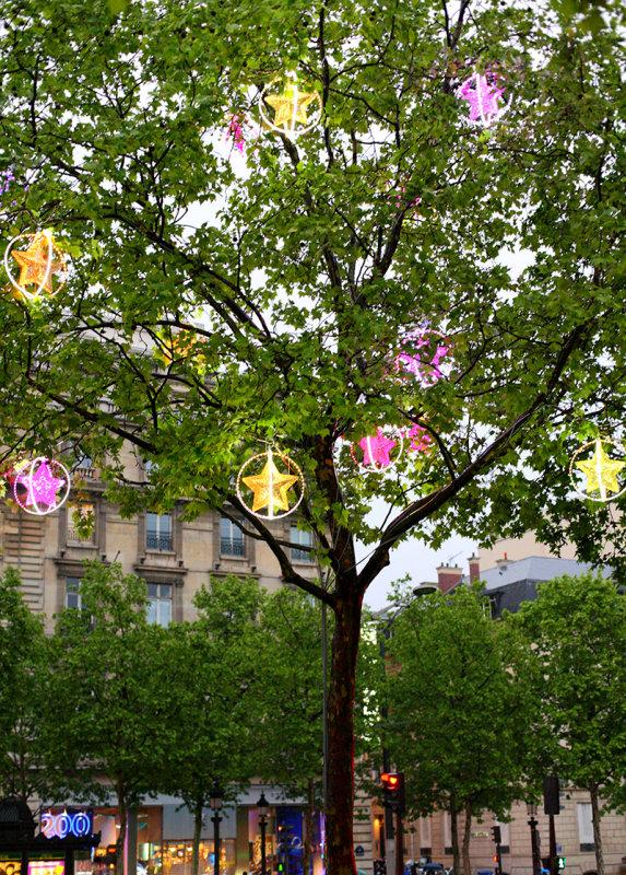 Paris - Champs Elysees Tree