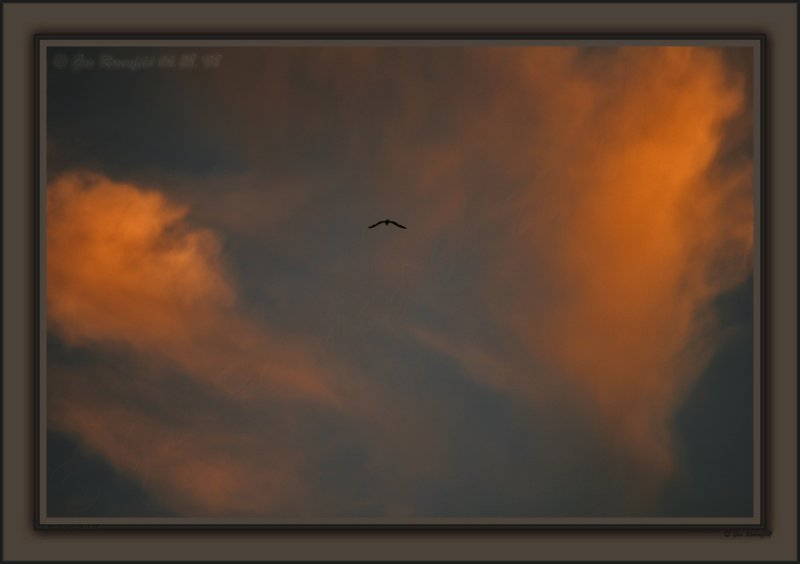 Sunset Vignette From Yesterday