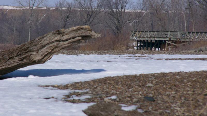 Cottonwood Fishing Pier, with Driftwood