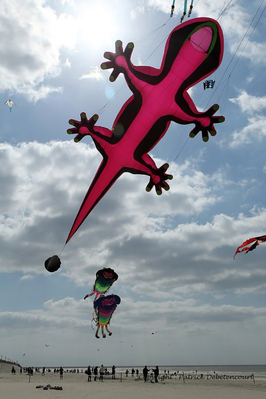 104 Cerfs volants … Berck sur Mer - MK3_7947_DxO WEB.jpg