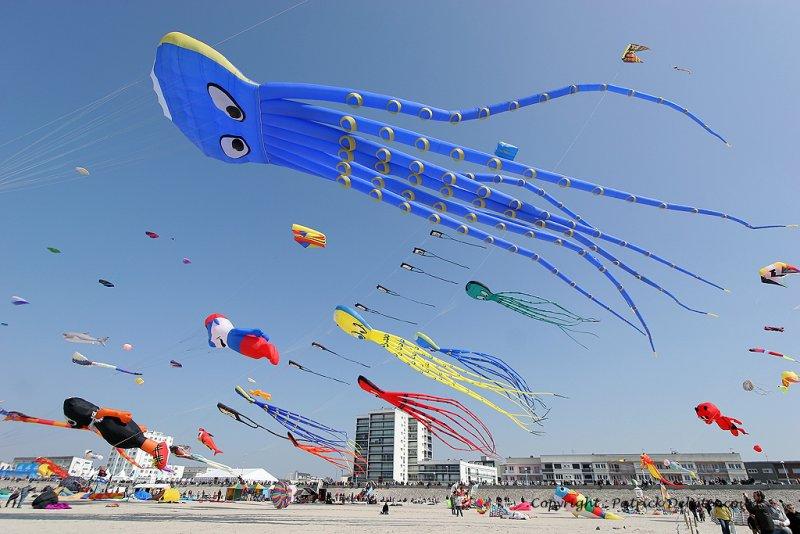 453 Cerfs volants … Berck sur Mer - IMG_3022_DxO WEB.jpg