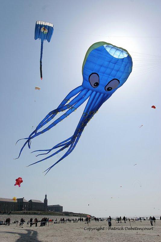 466 Cerfs volants … Berck sur Mer - IMG_3035_DxO WEB.jpg