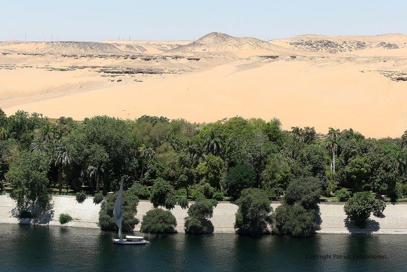 Assouan - 547 Vacances en Egypte - MK3_9409_DxO WEB.jpg