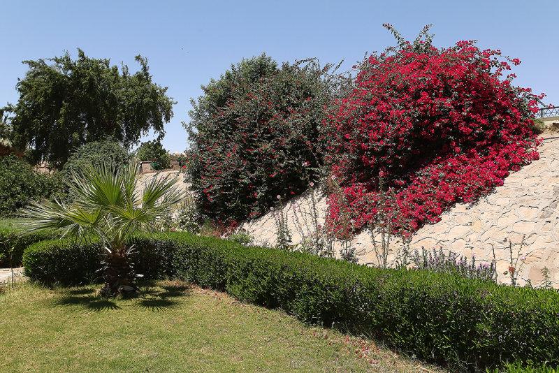 Assouan - 552 Vacances en Egypte - MK3_9414_DxO WEB.jpg