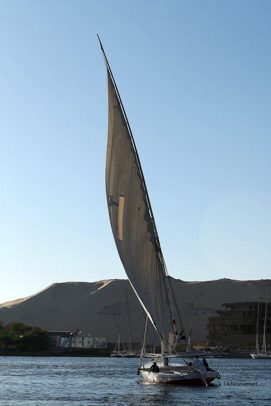 Assouan promenade en felouque - 940 Vacances en Egypte - MK3_9815_DxO WEB.jpg