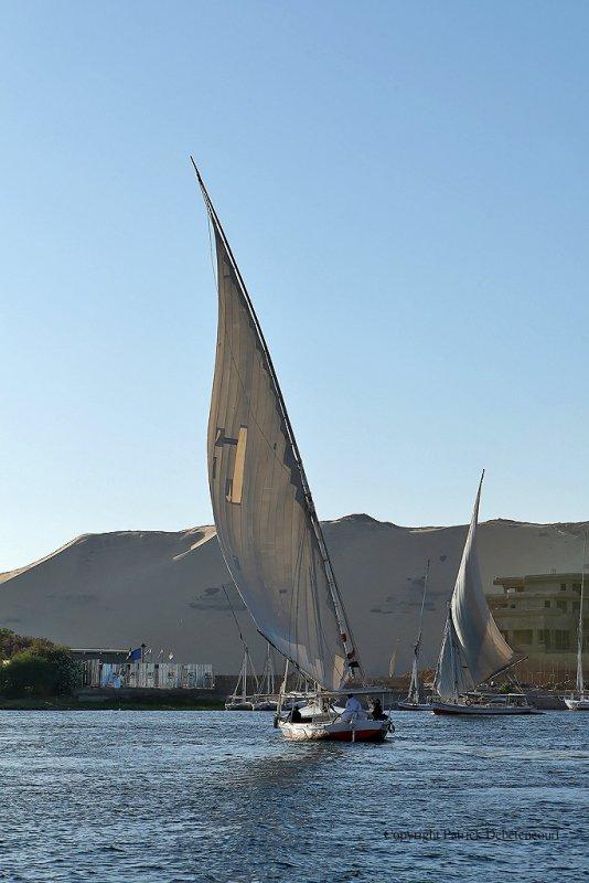 Assouan promenade en felouque - 941 Vacances en Egypte - MK3_9816_DxO WEB.jpg