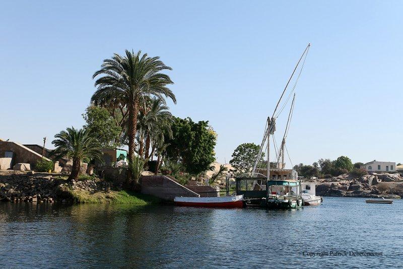 Assouan promenade en felouque - 1064 Vacances en Egypte - MK3_9941_DxO WEB.jpg