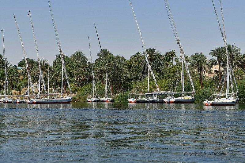 Assouan promenade en felouque - 1206 Vacances en Egypte - MK3_0085_DxO WEB.jpg