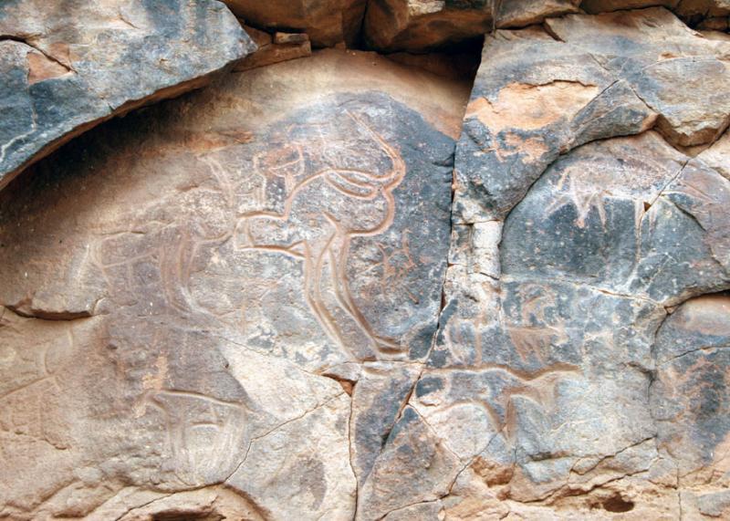 Ostrich petroglyph