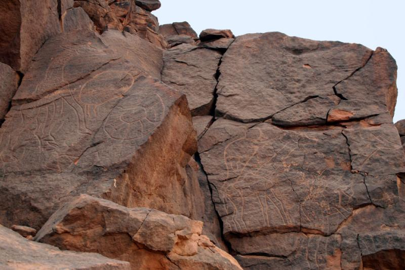 Giraffe and human petroglyphs