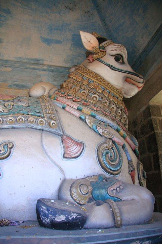 Painted nandi, Nataraja Temple