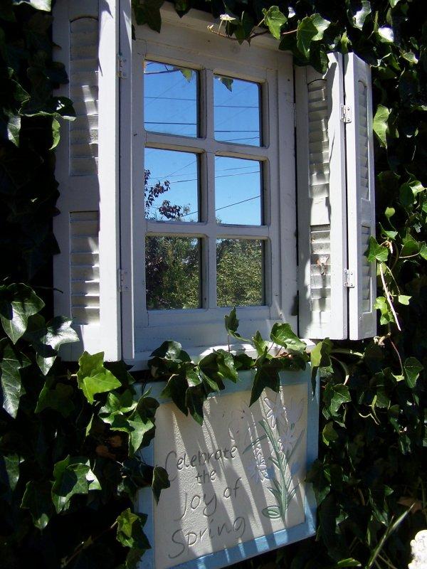 July Garden 011.jpg
