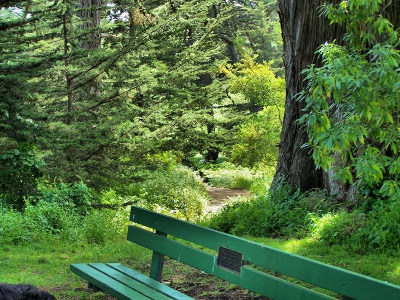 Bench at the lake.