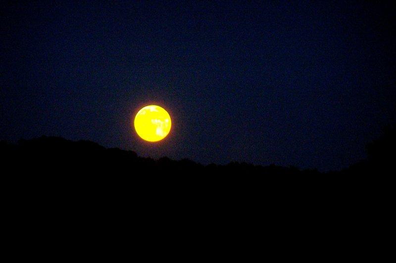 December full moon 005.jpg
