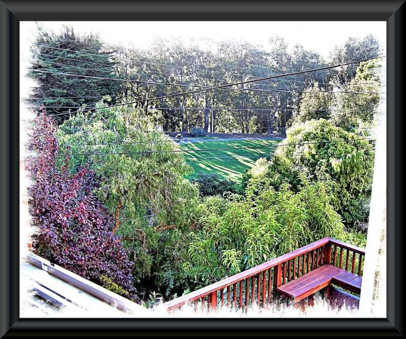 The view from my window in August.jpg