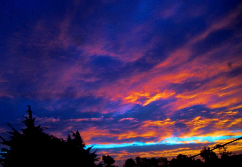 Morning from my window.jpg