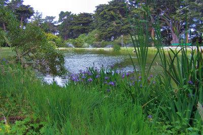 Spring Iris at the lake 003.jpg