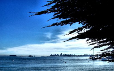View from Marin.jpg