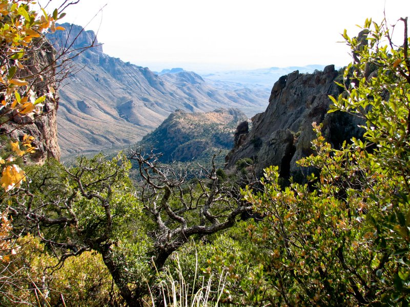 View from Boot Canyon at Big Bend National Park