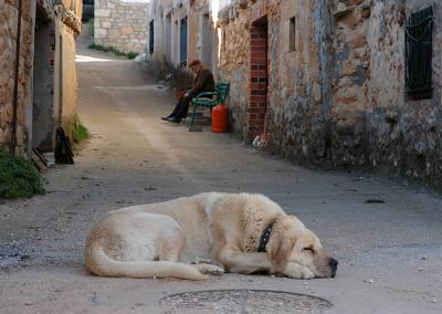 Asleep in Castroceniza