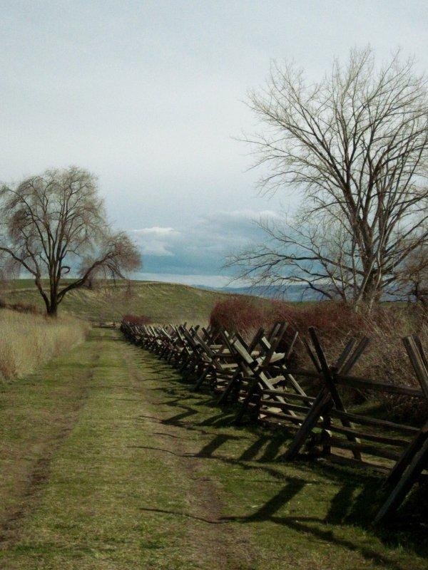 Oregon Trail #1902