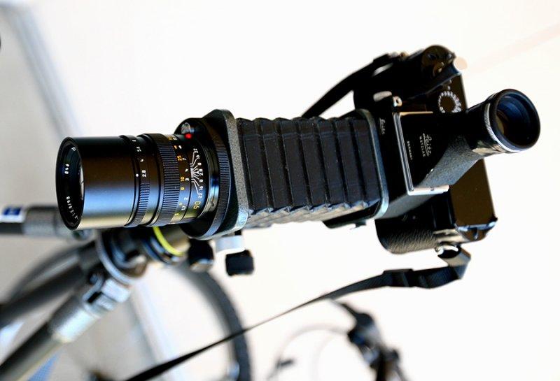 M9, Visoflex III, Leica Bellows, 90mm Elmarit M f2.8