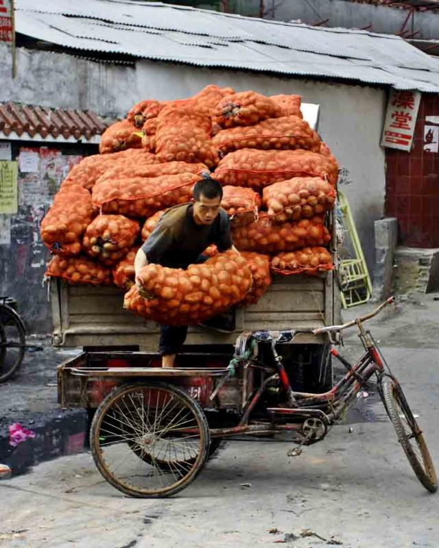 Moving some potatoes. Jishou City, China.