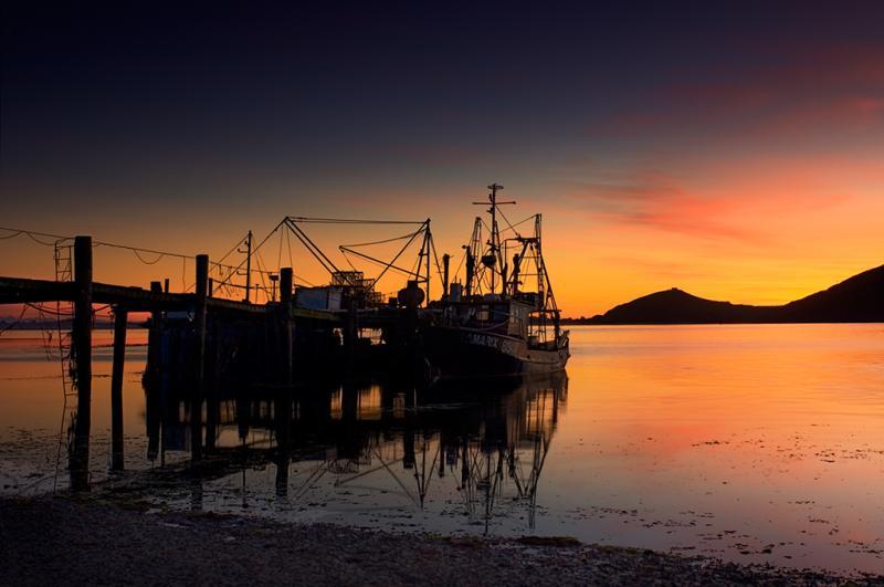 Sunrise Otago Harbour