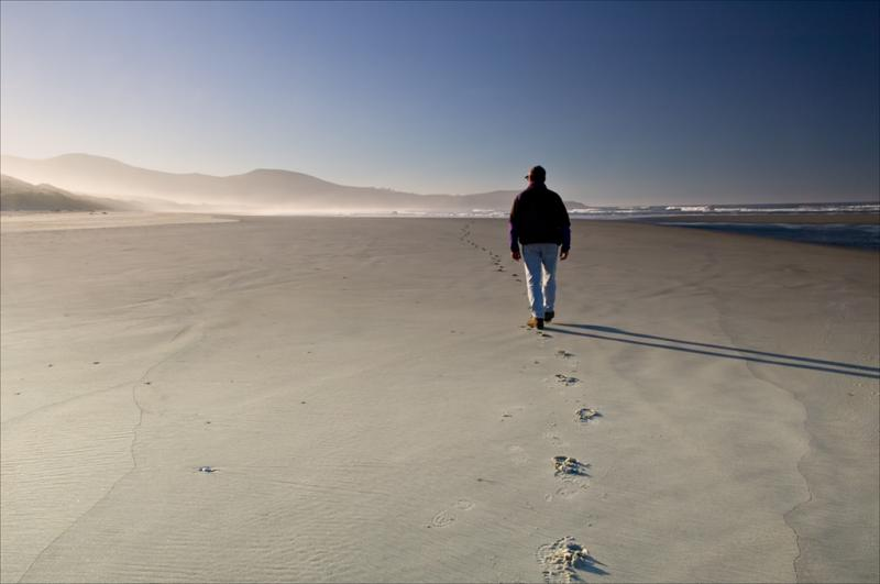 A crowded beach Otago Peninsula