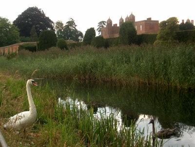 Swan & Castle, Essex 2005