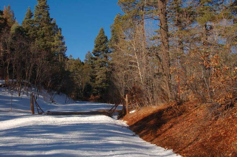 Road to Blue Bird Mesa