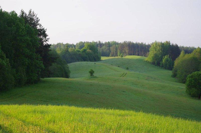 Sivers lake area
