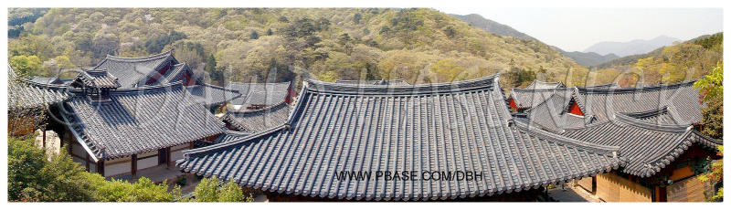 Temple Roof Lines