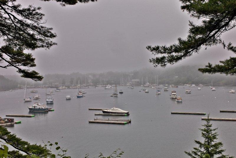 Northeast Harbor Fog