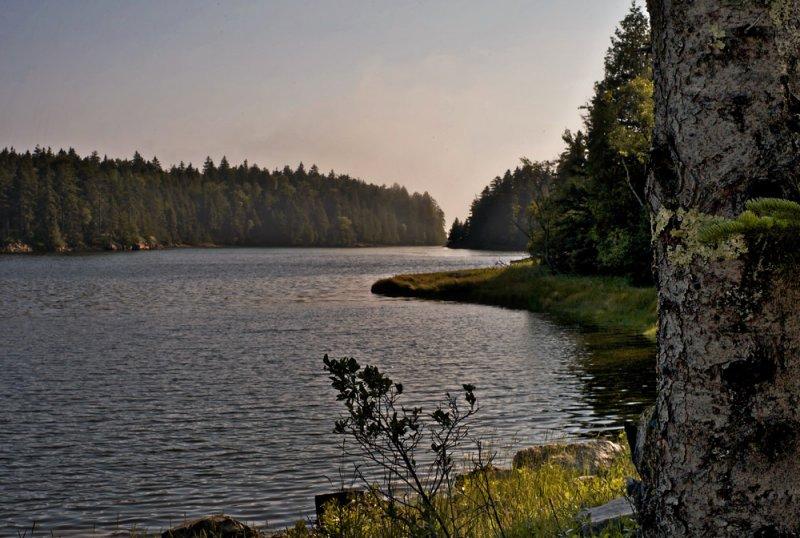 Pretty Marsh, Maine