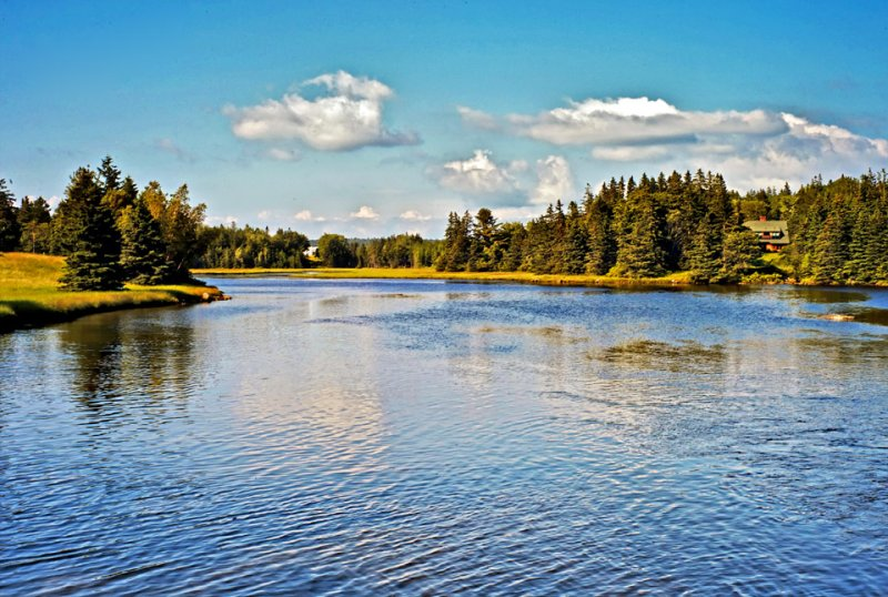 Stream, Pretty Marsh, Maine
