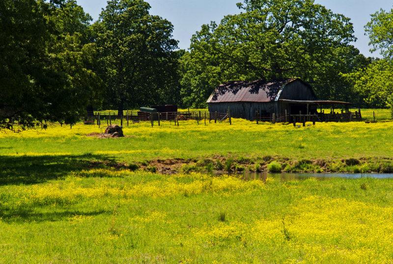 Mississippi Barn