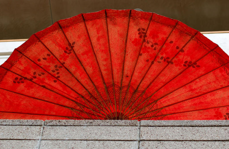 Japanese Umbrella 1