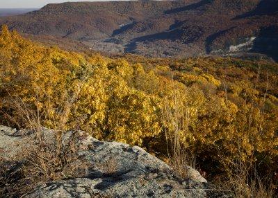 Fall Color on Buffalo National River