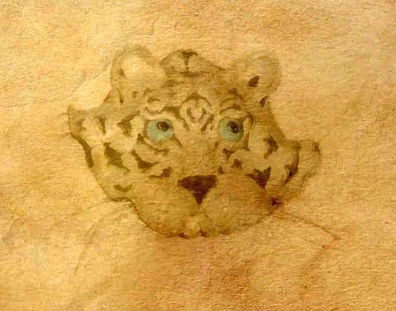 tiger tiger burning bright...