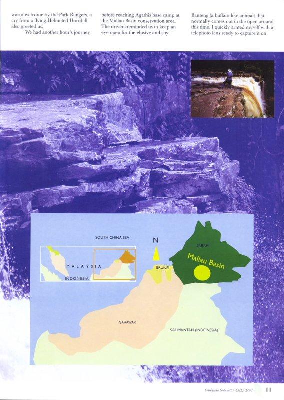Malaysian Naturalist Magazine