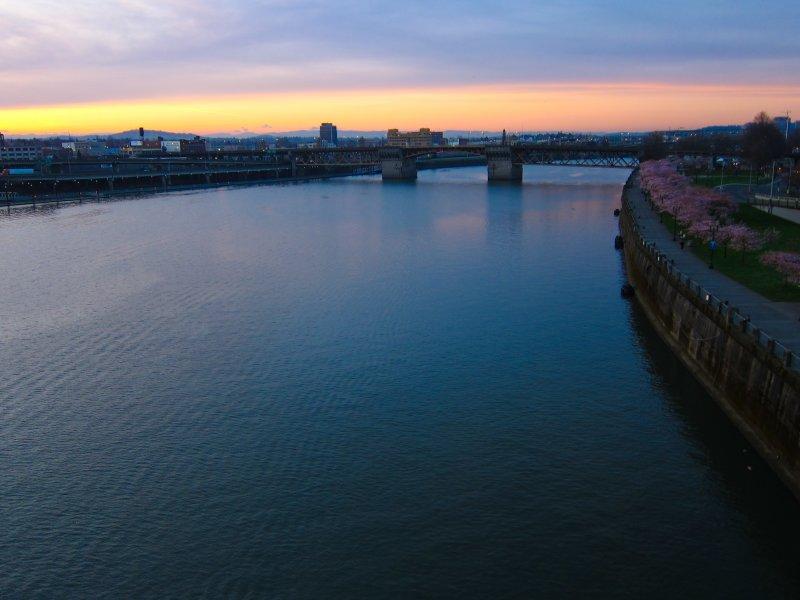 Burnside Bridge at Dawn