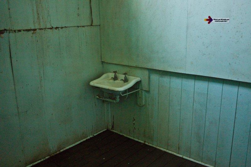Sink in Green Room
