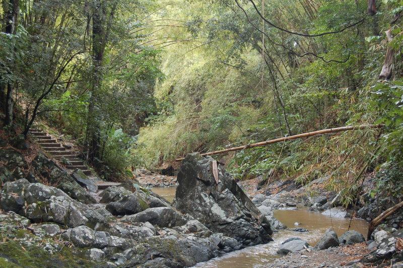 Argyle Waterfall - Bamboo Bridge