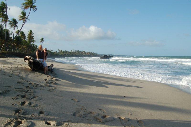 A beach in Trinidad