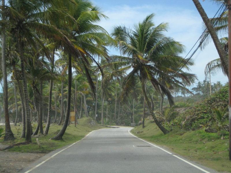 Quiet Highway in Trinidad