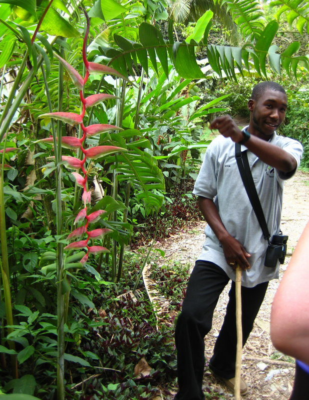 Atkin - Our Tour Guide explaining the Heliconia Flower