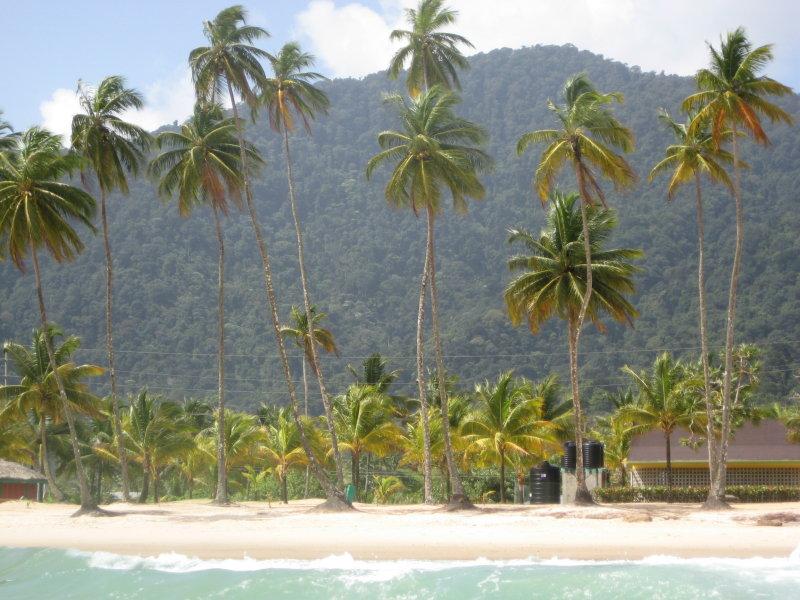 Maracas Beach